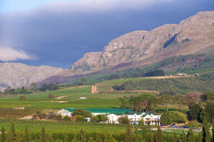 The Stellenbosch wine lands region near Cape Town. Royalty Free Stock Images