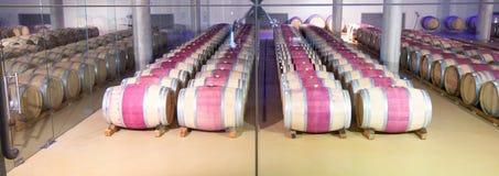 Stellenbosch winnica, przylądek prowincja, Południowa Afryka zdjęcia stock