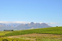 Stellenbosch panorama south africa royalty free stock photos