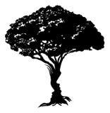 Stellt Baumkonzept gegenüber Stockfoto