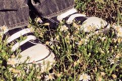 Stellung auf Blumen Lizenzfreie Stockfotografie
