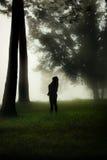 Stellung in einem nebelhaften Wald Lizenzfreie Stockfotos