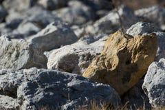 Stellung heraus in einer Menge von Steinen Lizenzfreie Stockfotografie