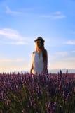 Stellung hinter Lavendeln Stockbild