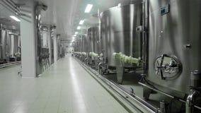 Stellvaten in winemakerfabriek stock footage