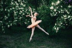 Stelt het ballerina die in openlucht klassieke ballet in bloemenland dansen Stock Foto's