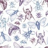 Stelt het hand getrokken vectorpatroon met insecten in verschillend Royalty-vrije Stock Foto's