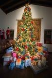 Stelt Vakantiekerstboom, Kleuren voor royalty-vrije stock afbeelding