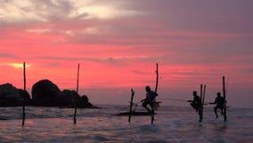 Steltvissers die met kleurrijke hemel bij zonsondergang vissen, nr Galle, stock videobeelden