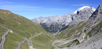 Stelvio National Park Stock Afbeeldingen