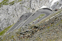 Stelvio pass, Bolzano - Italy Royalty Free Stock Images