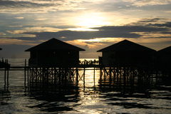 Stelze bringt @ Sonnenuntergang unter Lizenzfreie Stockfotos