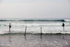 Stelzen-Fischer Sri Lankan lizenzfreie stockbilder