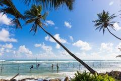 Stelzenfischer, die auf einem Pfosten bei einem Palm Beach nahe Galle, Sri Lanka sitzen Lizenzfreie Stockfotos