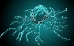 Stem cell Royalty Free Stock Photography