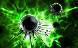 Stem cell Stock Photos
