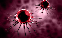 Stem cell Royalty Free Stock Images