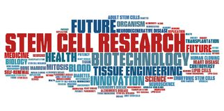 Stem cell research Royalty Free Stock Photos