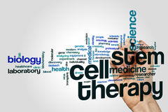Stem cell therapy word cloud. Concept on grey background Stock Photo