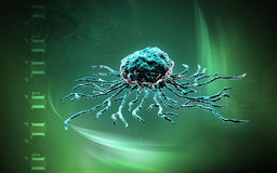 Stem cells Stock Photography