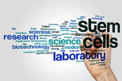 Stem cells word cloud. Concept on grey background Royalty Free Stock Photography