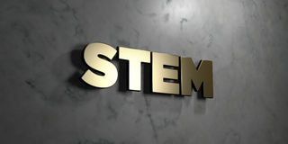 Stem - Gold sign mounted on glossy marble wall  - 3D rendered royalty free stock illustration Stock Images
