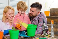 STEM home training. Eco-class with a child. A little blond boy planting herbs with her parents. Happy family is spending royalty free stock photo