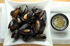 Stemed mussels with heated butter Stock Images