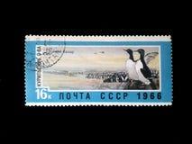 Stempel der UDSSR über das Bild von Pinguinen, den Namen ein Vogel ` s Markt, ein Vogel des Nordpols, die Presse auf dem Bild, al Lizenzfreie Stockfotografie
