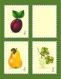 Stempel mit Früchten Stockbild