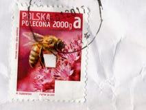 Stempel von Polen Lizenzfreies Stockbild