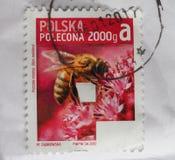 Stempel von Polen Stockbild