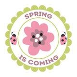 Stemplowa wiosna jest nadchodząca ręka rysującym biedronka kwiatów zieleni wianku lata projekta elementem obraz royalty free