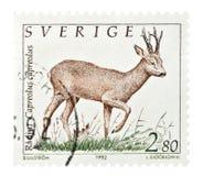 stemplowi szwedów, Fotografia Royalty Free