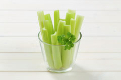 Stems of green celery Royalty Free Stock Images