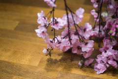 The stems of pink flowers background. Branch flowers Stock Photos