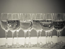 Stemware of champagne on a white table. Banquet. Toned Stock Image