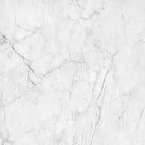 Sten för dekorativ sten för golv för marmortexturbakgrund inre Royaltyfri Bild