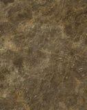 sten för kaffemarmorrome slab Royaltyfri Bild