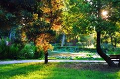 sten för park för porslinhainan ö Arkivbilder