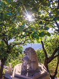 sten för porslinlionnanjing lättnad Royaltyfria Bilder