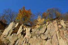 Sten-grop i hösten arkivfoton