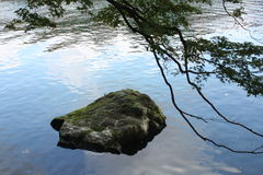 Sten i floden Royaltyfria Bilder