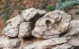 Sten i form av skallen Arkivfoton