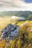Sten i mitt av vegetationen på överkanten av mounen Fotografering för Bildbyråer