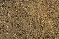 Sten (kÅ`) Arkivbild