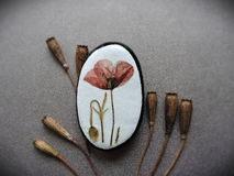 Sten med den pressande blomman Royaltyfri Fotografi