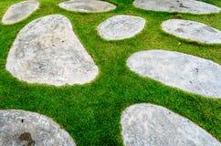 Sten- och grästextur Arkivfoton