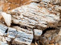 Sten och jord på jord för stenigt berg Arkivbilder
