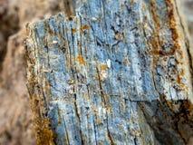 Sten och jord på jord för stenigt berg Royaltyfria Foton